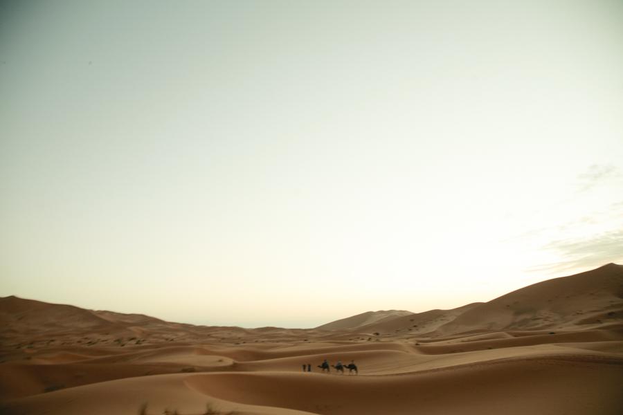 landscape//