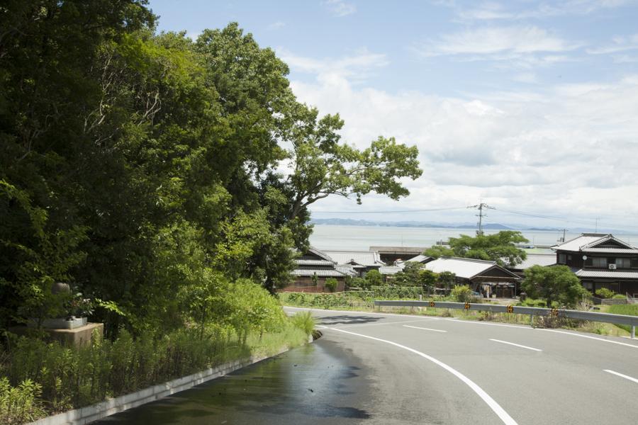 landscape///